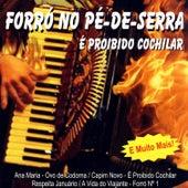 Forró Pé De Serra: É Proibido Cochilar von Various Artists