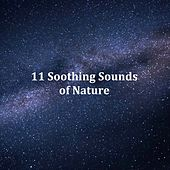 11 Soothing Sounds of Nature: Relax and Unwind with Natural Rain Sounds for Sleep and Relaxation de White Noise Babies