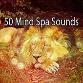 50 Mind Spa Sounds von Best Relaxing SPA Music