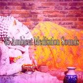 45 Ambient Meditation Sounds de Meditación Música Ambiente
