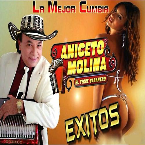 La Mejor Cumbia Éxitos by Aniceto Molina