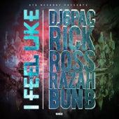 I Feel Like (feat. Rick Ross, Bun B & Razah) by DJ 6 Pac