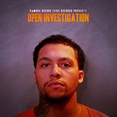 Open Investigation by J Woods
