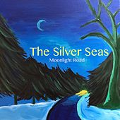 Moonlight Road by The Silver Seas