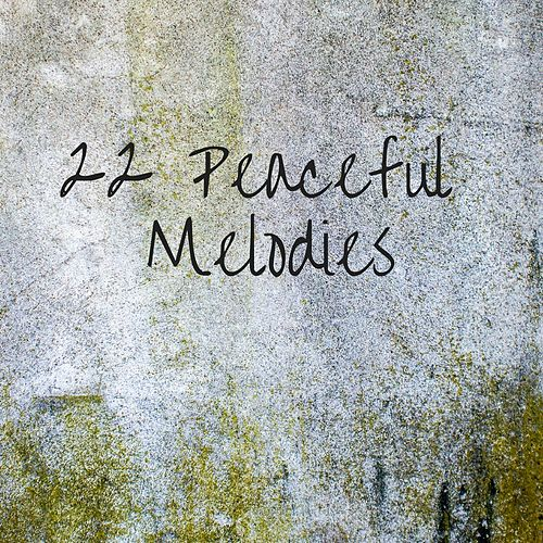 22 Peaceful Melodies de Meditation Music Zone