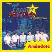 Amándote by Grupo Toppaz de Reynaldo Flores