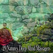 29 Natures Deep Mind Massagers von Lullabies for Deep Meditation