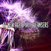 42 New Age Spirit Cleansers de Zen Meditation and Natural White Noise and New Age Deep Massage