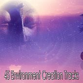 45 Environment Creation Tracks by Massage Therapy Music