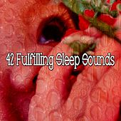 42 Fulfilling Sleep Sounds by Lullaby Land