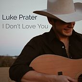 I Don't Love You by Luke Prater
