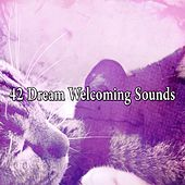 42 Dream Welcoming Sounds de White Noise Babies