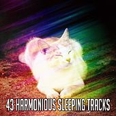 43 Harmonious Sleeping Tracks de White Noise Babies