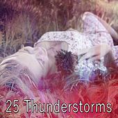 25 Thunderstorms by Thunderstorm