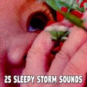 25 Sleepy Storm Sounds de Thunderstorm Sleep