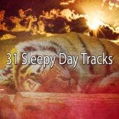 31 Sleepy Day Tracks by Ocean Waves For Sleep (1)