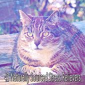 43 Naturally Sourced Stress Relievers by S.P.A