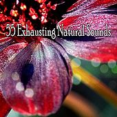 55 Exhausting Natural Sounds by Smart Baby Lullaby