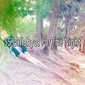 55 Lullabyes For The Night de White Noise Babies