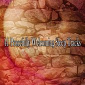 41 Peacefully Welcoming Sleep Tracks by White Noise For Baby Sleep