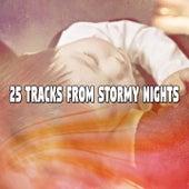 25 Tracks From Stormy Nights de Thunderstorm Sleep