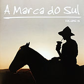 A Marca do Sul, Vol. 13 by Various Artists