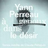 À genoux dans le désir by Yann Perreau