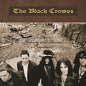 The Southern Harmony And Musical Companion by The Black Crowes