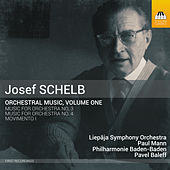 Schelb: Orchestral Music, Vol. 1 by Various Artists