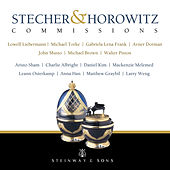 Stecher & Horowitz Commissions von Various Artists