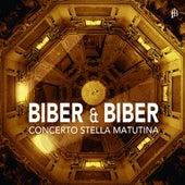 Biber & Biber by Various Artists