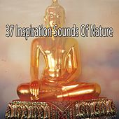 37 Inspiration Sounds Of Nature by Yoga Music