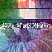 35 Audio Tracks Of Nature by Ocean Waves For Sleep (1)