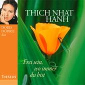 Frei sein, wo immer du bist by Thich Nhat Hanh