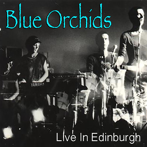 Blue Orchids Live In Edinburgh by Blue Orchids