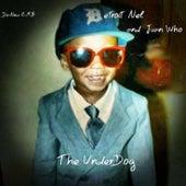 The Underdog by Detroit Nel