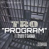 Program (feat. Dyablo & Sandman) by TRO
