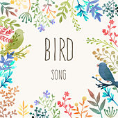 Bird Song by Bird Sounds
