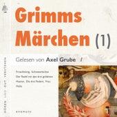 Märchen der Brüder Grimm (1) (5 Märchen mit kurzen Musikeinleitungen. Der Froschkönig, Schneewittchen, Der Teufel mit den 3 goldenen Haaren, Die drei Federn, Frau Holle.) by Brüder Grimm