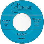Big Day by Orgone