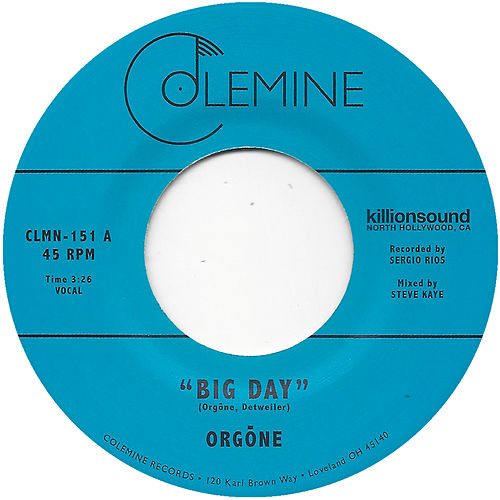 Big Day by Orgone