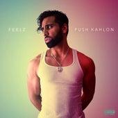 Feelz - EP de Push Kahlon