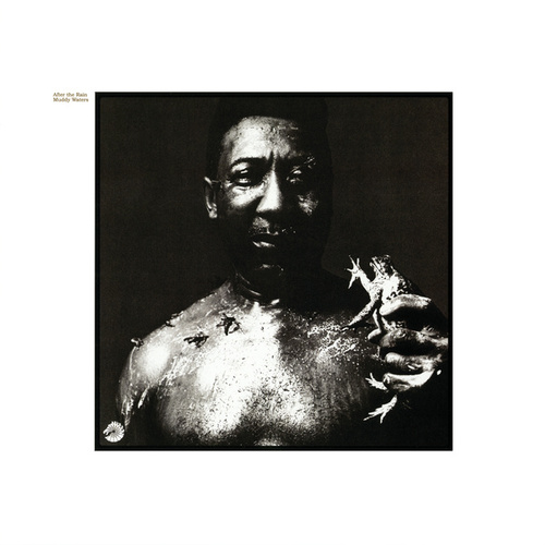 After The Rain by Muddy Waters