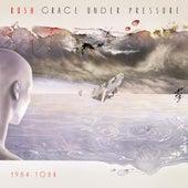 Grace Under Pressure: 1984 Tour de Rush