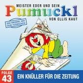 43: Ein Knüller für die Zeitung (Das Original aus dem Fernsehen) von Pumuckl