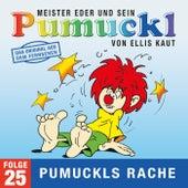 25: Pumuckls Rache (Das Original aus dem Fernsehen) von Pumuckl