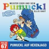 67: Pumuckl auf Hexenjagd (Das Original aus dem Fernsehen) von Pumuckl