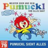 79: Pumuckl sieht alles (Das Original aus dem Fernsehen) von Pumuckl