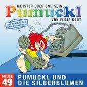 49: Pumuckl und die Silberblumen (Das Original aus dem Fernsehen) von Pumuckl