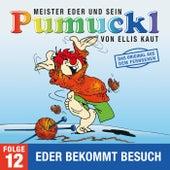12: Eder bekommt Besuch (Das Original aus dem Fernsehen) von Pumuckl